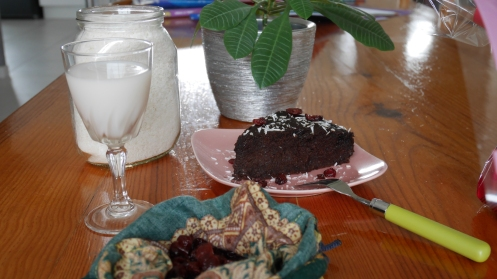 Gâteau moelleux au chocolat (15)