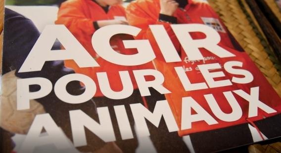 Agir pour les animaux