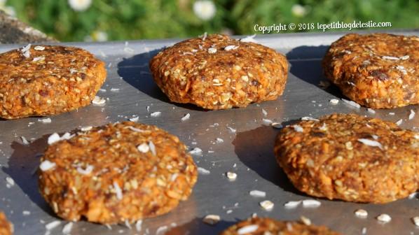 Le_petit_blog_de_leslie_vegan_cookies_crus_carottes_coco (10)
