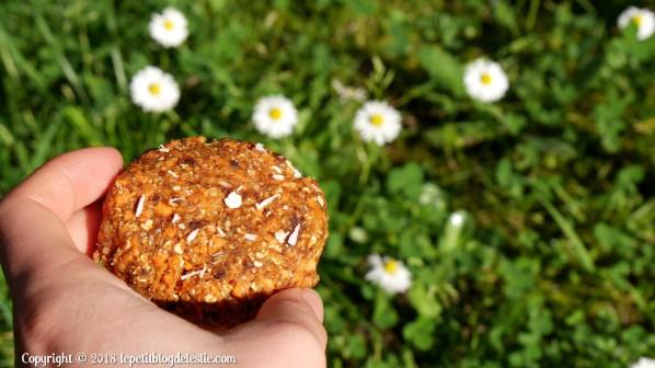 Le_petit_blog_de_leslie_vegan_cookies_crus_carottes_coco (11)