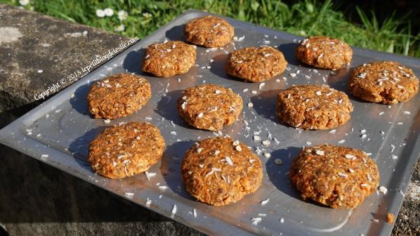 Le_petit_blog_de_leslie_vegan_cookies_crus_carottes_coco (4)