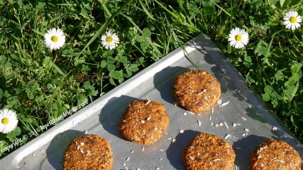 Le_petit_blog_de_leslie_vegan_cookies_crus_carottes_coco (8)