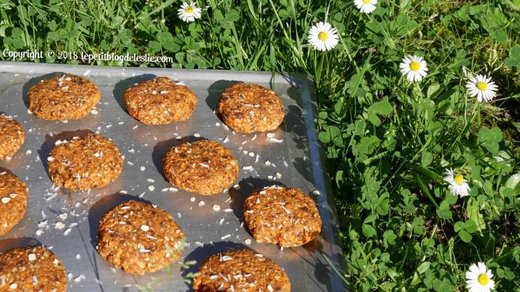 Le_petit_blog_de_leslie_vegan_cookies_crus_carottes_coco (9)
